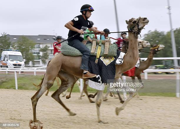 Jockeys drive their camels on July 24 2015 in the western town of Pornichet as they compete in one leg of the first French camels race championship...