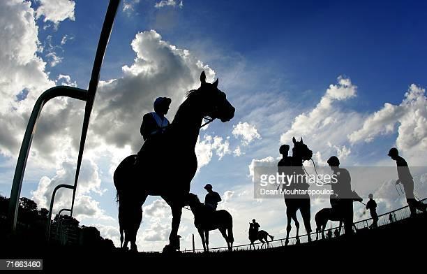 Jockeys get ready to enter the stalls prior to The Oxshott Handicap Stakes Race run at Sandown Park Racecourse on August 17 2006 in Sandown England
