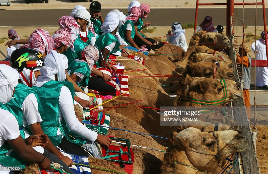 Jockeys prepare to compete in a camel race during the Sheikh Sultan Bin Zayed al-Nahyan herithe festival, held at the Shweihan racecourse in Al-Ain, on the outskirts of Abu Dhabi, on February 12, 2016. The festival includes a camel beauty contest, a traditional souq, a camel auction, and competitions for traditional handicrafts. / AFP / MARWAN NAAMANI