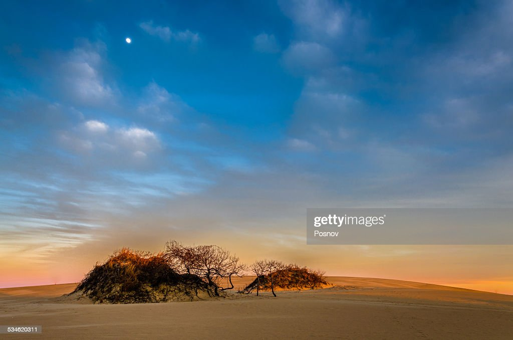 Jockey's Ridge Sand Dunes