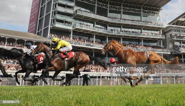 Joe Doyle falls from Mantou in the Betfred Melrose Stakes on Betfred Ebor Day during Day Four of the 2014 Welcome To Yorkshire Ebor Festival at York...
