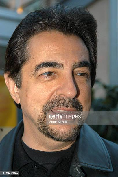 Joe Mantegna during The 5th Annual Los Angeles Italian Film Awards Screening Of 'Between Strangers' at Arclight Theater in Hollywood California...