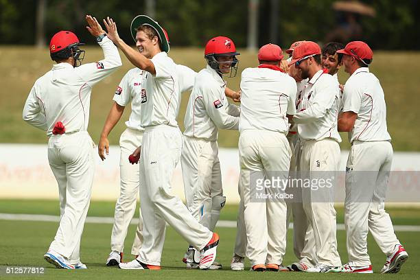 Joe Mennie of the Redbacks celebrates with his team after taking the catch to dismiss Nic Maddinson of the Blues during day three of the Sheffield...