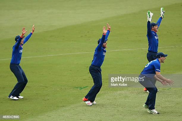 Joe Root Ian Bell Jos Buttler and James Tredwell of England appeal during the ICC Cricket World Cup warm up match between England and the West Indies...