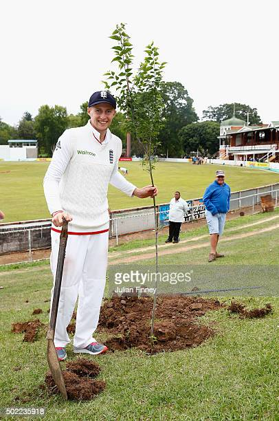 Joe Root of England plants a tree after scoring a century a honour given to any international batsman scoring 100 runs at the City Oval during day...
