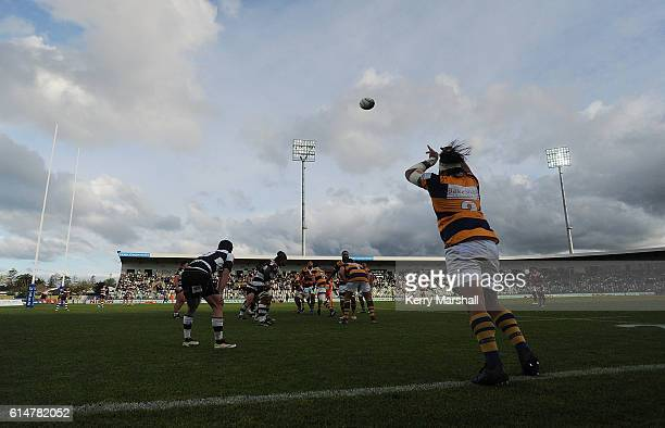 Joe Royal of Bay of Plenty throws to a lineout during the round nine Mitre 10 Cup match between Hawke's Bay and Bay of Plenty on October 15 2016 in...