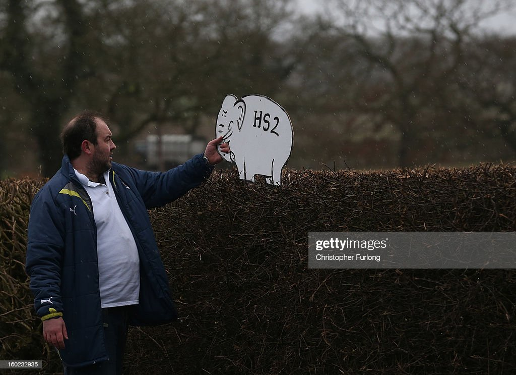Joe Rukin from the Stop the HS2 Campaign places a cardboard white elephant in hedgerow near to the planned location of the new HS2 high speed rail link as it passes by the village of Hoo Green on January 28, 2013 in Knutsford, United Kingdom. The government has today released details of the next phase of the GBP 32 billion HS2 high-speed rail network, which will link Manchester and Leeds.