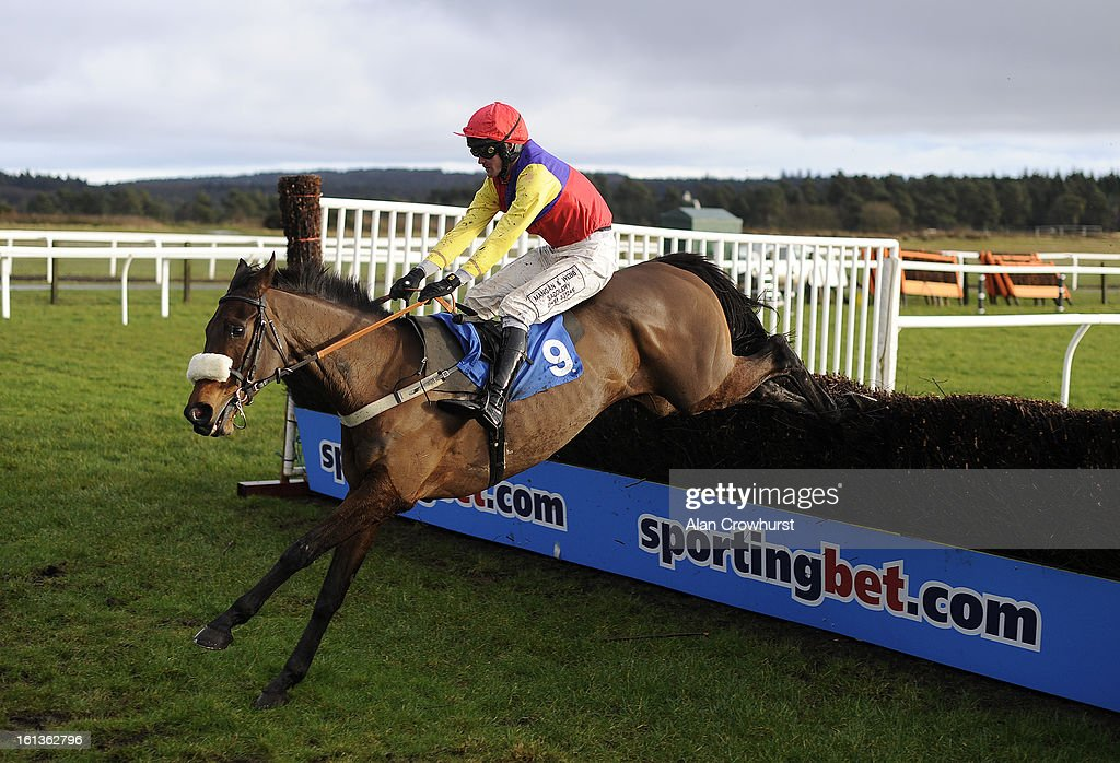 Joe Tizzrad riding Theatrical Star clear the last to win The BathwickTyres Bridgwater Novices' Steeple Chase at Exeter racecourse on February 10, 2013 in Exeter, England.