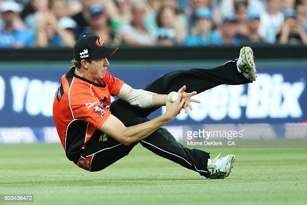 Joel Paris of the Scorchers takes a catch to dismiss Tim Ludeman of the Adelaide Strikers during the Big Bash League match between the Adelaide...