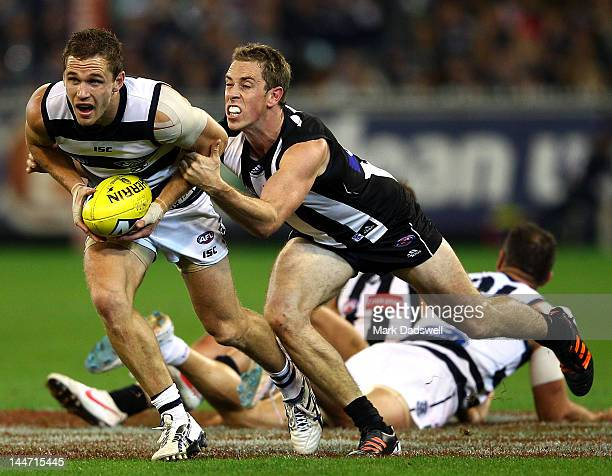 Joel Selwood of the Cats is tackled by Nick Maxwell of the Magpies during the round eight AFL match between the Collingwood Magpies and the Geelong...