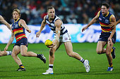 Joel Selwood of the Cats looks upfield during the round 18 AFL match between the Geelong Cats and the Adelaide Crows at Simonds Stadium on July 23...