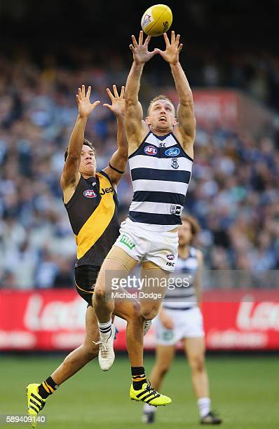 Joel Selwood of the Cats marks the ball against Daniel Rioli of the Tigers during the round 21 AFL match between the Richmond Tigers and the Geelong...