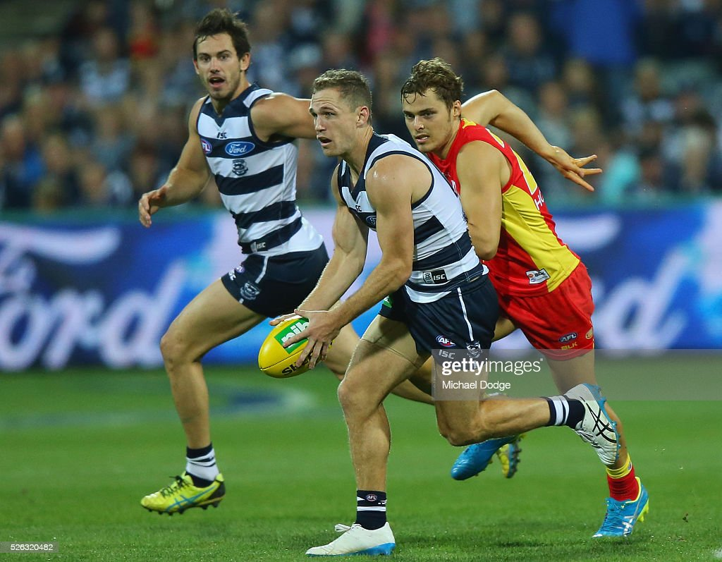 <a gi-track='captionPersonalityLinkClicked' href=/galleries/search?phrase=Joel+Selwood&family=editorial&specificpeople=4521436 ng-click='$event.stopPropagation()'>Joel Selwood</a> of the Cats runs with the ball during the round six AFL match between the Geelong Cats and the Gold Coast Suns at Simonds Stadium on April 30, 2016 in Geelong, Australia.