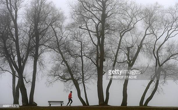 A jogger runs in front of trees near the lake Ammersee in Herrsching southern Germany during foggy winter weather and temperatures by the freezing...