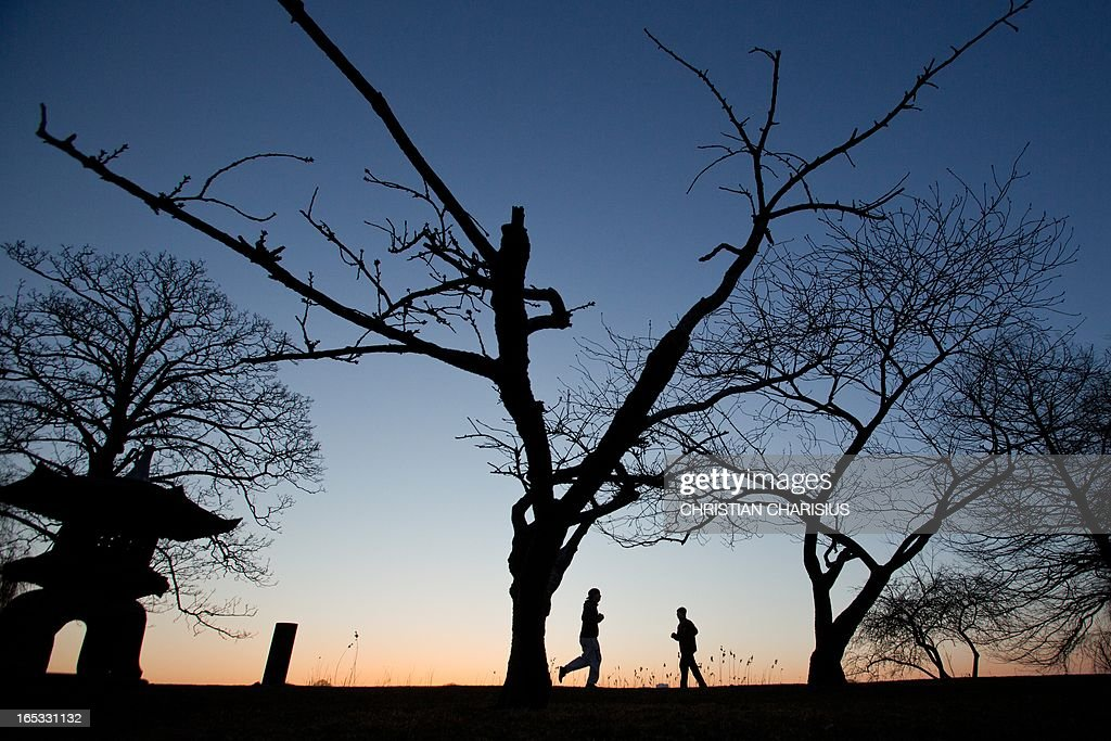 Joggers run before the sunrise underneath leafless trees along the banks of Alster Lake in Hamburg, Germany, on April 3, 2013.