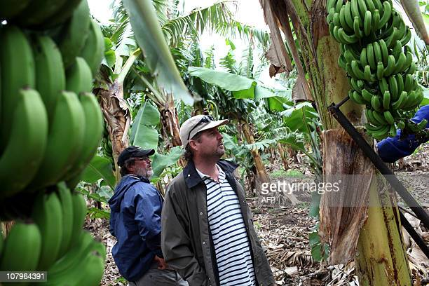 Johannes MyburghLance Spear and his colleague Jock Meyer stand in their banana plantation in Mafavuka Mozambique on November 29 2010 Lance Spear is a...