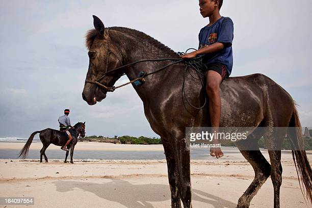 Johannes Ndara Kepala rides his freshly bathed and decorated horse for The Pasola on March 4 2013 in Sumba Island East Nusa Tenggara Indonesia...