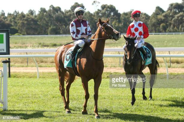 John Allen returns to the mounting yard on Red Choux's after winning Ararat RSL BM64 Handicapat Ararat Racecourse on November 12 2017 in Ararat...