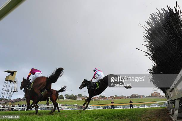 John Allen riding Regina Coeli jumps the last steeple before defeating Steven Pateman riding Lord Of The Song and Shane Jackson riding Dhaafer in...
