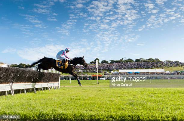 John Allen riding Regina Coeli on way to winning Grand Annual Steeple Chase during the Warrnambool Racing Carnival on May 4 2017 in Warrnambool...