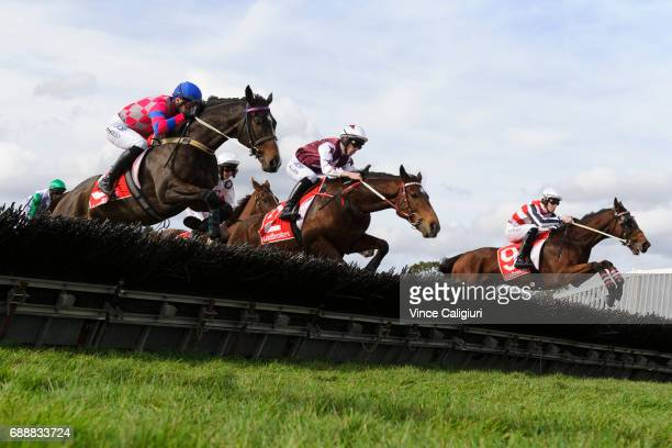 John Allen riding Renew jumping before winning Race 4 The Australian Hurdle during Melbourne Racing at Sandown Lakeside on May 27 2017 in Melbourne...