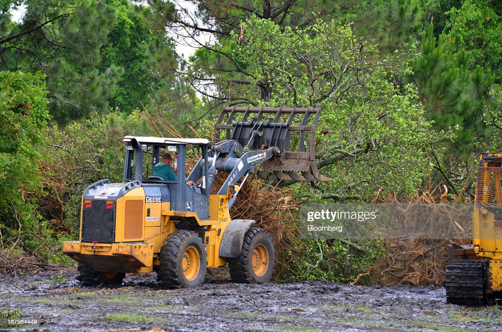 A John Deere 444J places a Valencia orange tree infected with bacteria from the Asian Citrus Psyllid insect in a burn pile at the Reynolds Farm in Lake Placid, Florida, U.S., on Thursday, May 2, 2013. The U.S. Department of Agriculture probably will lower its estimate for Florida's orange output as unusually dry weather compounds damage from citrus greening, a crop disease that cuts yields. Photographer: Mark Elias/Bloomberg via Getty Images