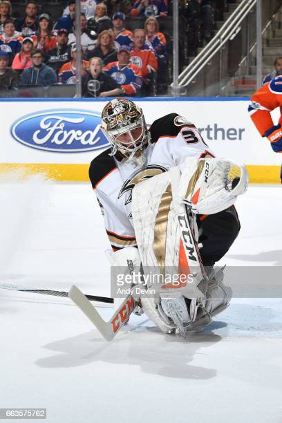 John Gibson of the Anaheim Ducks makes a save during the game against the Edmonton Oilerson April 1 2017 at Rogers Place in Edmonton Alberta Canada