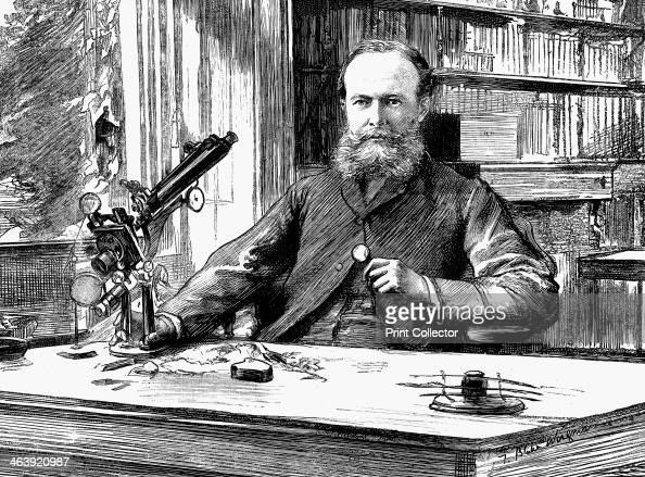 John Lubbock lst Baron Avebury English banker scientist and Liberal politician 1884 Lubbock at a desk by the window in his library working with a...