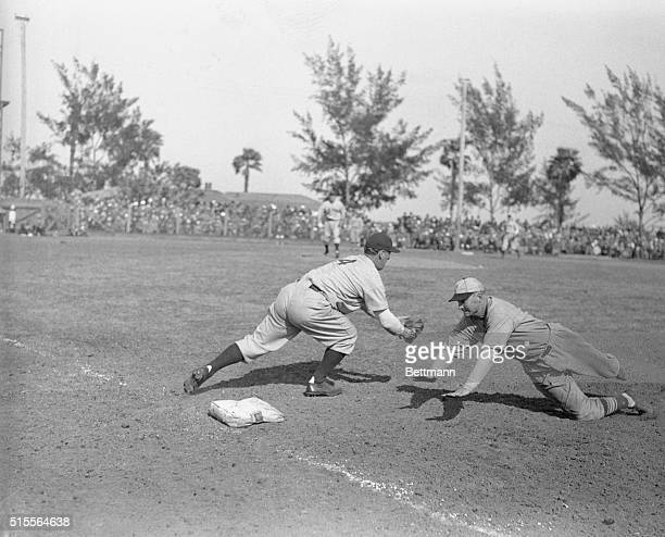 John Mize St Louis Cardinal infielder out at 1st base caught napping by catcher Joe Glenn after taking a liong lead off the bag during the game with...