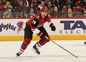 John Scott of the Arizona Coyotes skates up ice against the Edmonton Oilers at Gila River Arena on November 12 2015 in Glendale Arizona