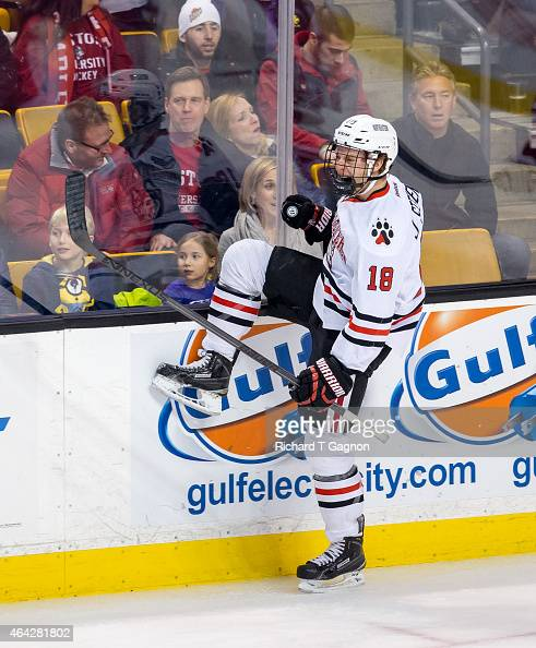 John Stevens of the Northeastern Huskies celebrates his goal against against the Boston University Terriers in the first period during NCAA hockey in...