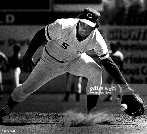 Johnny Bench of the Cincinnati Reds circa 19782 in Tampa Florida