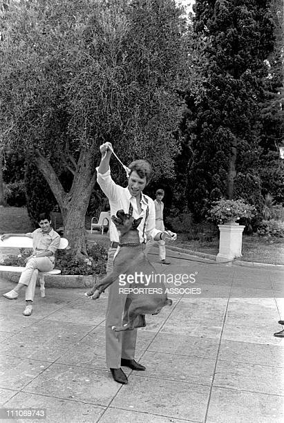 Johnny Hallyday in the sixties in France Johnny Hallyday playing with a dog on the French Riviera in France on August 27 1967