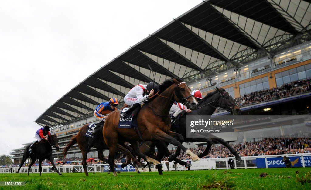 <a gi-track='captionPersonalityLinkClicked' href=/galleries/search?phrase=Johnny+Murtagh&family=editorial&specificpeople=214782 ng-click='$event.stopPropagation()'>Johnny Murtagh</a> riding Royal Diamnond (R) win The Qipco British Champion Long Distance Cup at Ascot racecourse on October 19, 2013 in Ascot, England.