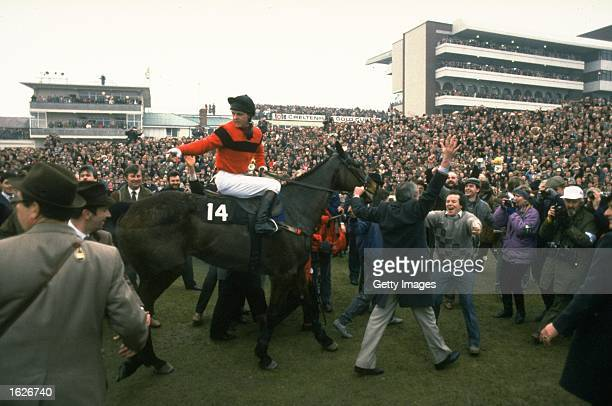 Jon Jo O''Neil of Ireland on Dawn Run is led to the winner's enclosure after his victory in the Gold Cup at Cheltenham racecourse in Gloucestershire...