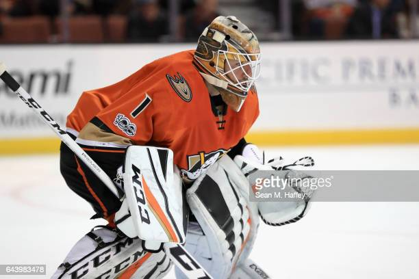 Jonathan Bernier of the Anaheim Ducks looks on during the second period of a game against the Boston Bruins at Honda Center on February 22 2017 in...
