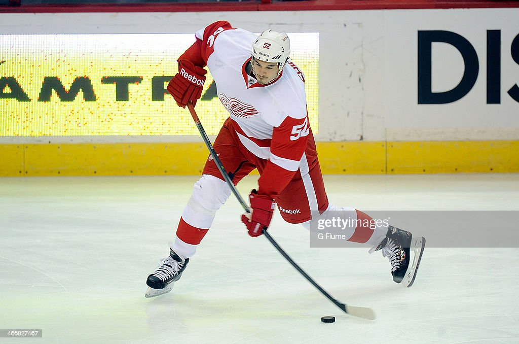 Jonathan Ericsson of the Detroit Red Wings warms up before the game against the Washington Capitals at Verizon Center on February 2 2014 in...