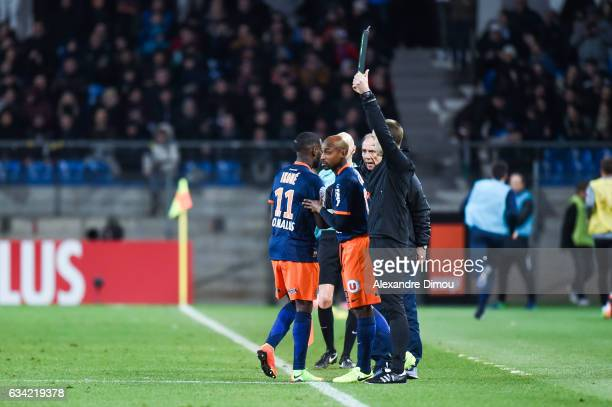 Jonathan Ikone and Souleymane Camara of Montpellier during the French Ligue 1 match between Montpellier and Monaco at Stade de la Mosson on February...