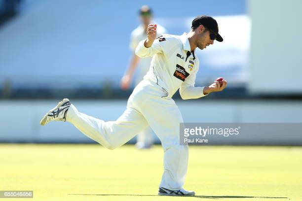 Jonathan Wells of Western Australia takes a catch to dismiss Daniel Hughes of New South Wales during the Sheffield Shield match between Western...