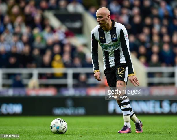 Jonjo Shelvey of Newcastle United looks to pass the ball during the Sky Bet Championship Match between Newcastle United and Burton Albion at StJames'...