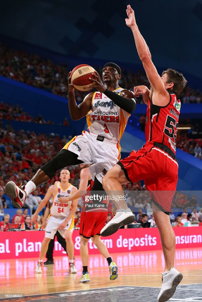 Jonny Flynn of the Tigers drives to the basket against <a gi-track='captionPersonalityLinkClicked' href=/galleries/search?phrase=Damian+Martin+-+Giocatore+di+basket&family=editorial&specificpeople=13687064 ng-click='$event.stopPropagation()'>Damian Martin</a> of the WIldcats during the round 20 NBL match between the Perth Wildcats and the Melbourne Tigers at Perth Arena on February 21, 2013 in Perth, Australia.