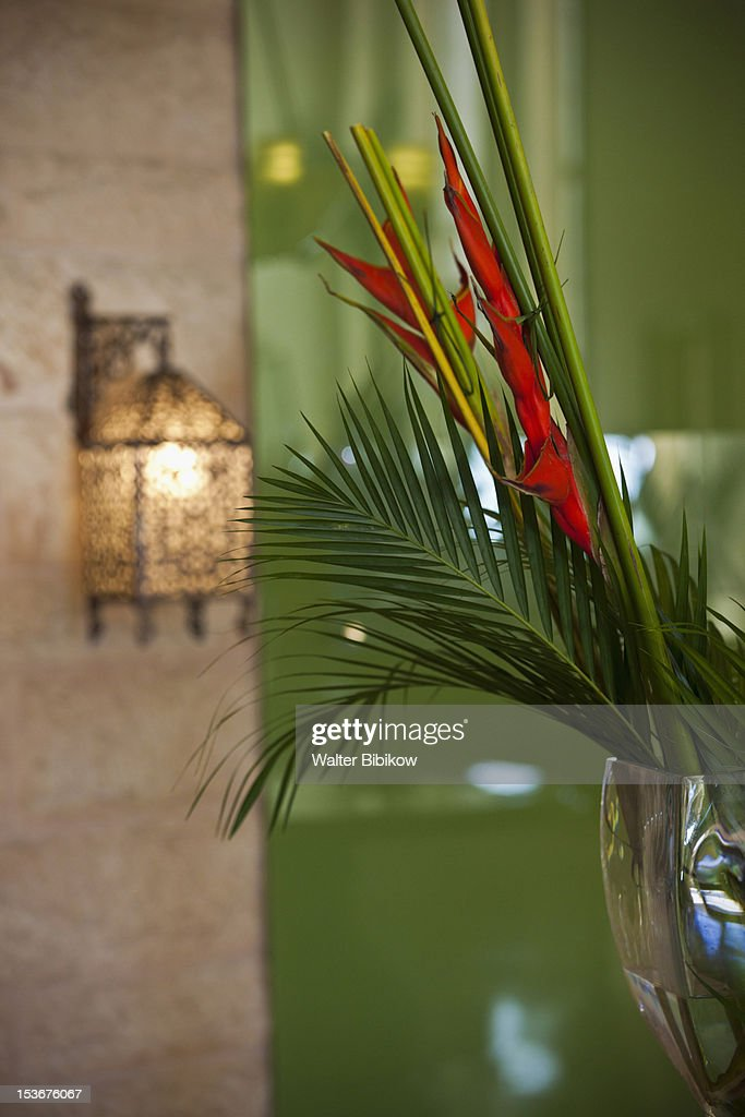 Jordan, Aqaba, lamp & heliconia flower : Stock Photo