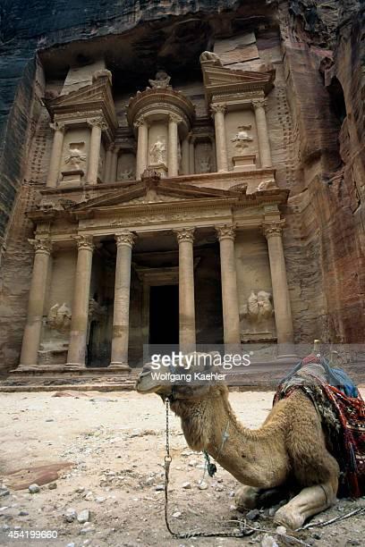 Jordan Petra Treasury With Camel