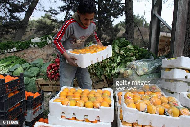 Jordanian boy sells fruits and vegetables on the side of a road in Amman on December 20 2008 there are an estimated 33000 child workers across the...