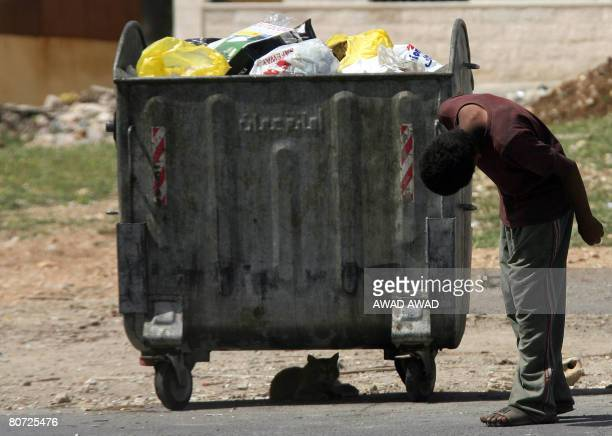 STORY A jordanian youth looks at a cat sitting in the shade of a garbage dumpster in Amman on April 16 2008 Although Jordan is considered one of the...