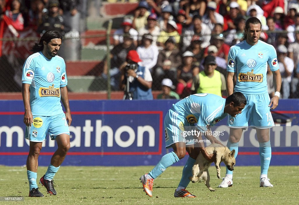 Jorge Chiroque (C) of Sporting Cristal takes out a dog from the field during a match between Sporting Cristal and Melgar FC as part of the Torneo Descentralizado 2013 at the Mariano Melgar Stadium on April 21, 2013 in Arequipa, Peru.