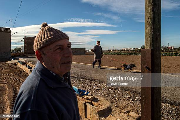 Jose Biot a retired farmer looks on as a plot of 'chufas' is farmed on tractors on January 18 2016 in Valencia Spain According to the Valencia's...