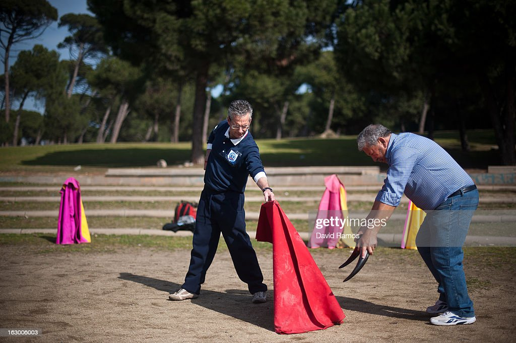 Jose Fernandez (C) and Antonio Guillen, 67, practice bullfighting in a city park in Santa Perpetua de la Mogoda on March 3, 2013 in Barcelona, Spain. On February 12 the Spanish Parliament accepted a petition from bullfight supporters asking for the sport to become a key part of the Spain's cultural heritage. The petition, of 590,000 signatures, has been promoted by the Federation of Bullfighting Entities of Catalonia. The last bullfight in Catalonia was held in September 25, 2011.