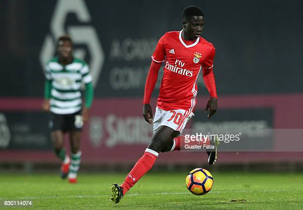 Jose Gomes of SL Benfica B in action during the Segunda Liga match between SL Benfica B and Sporting CP B at Caixa Futebol Campus on December 16 2016...
