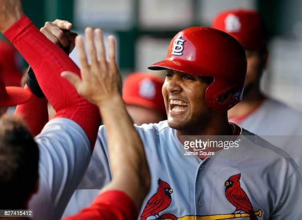 Jose Martinez of the St Louis Cardinals is congratulated by teammates in the dugout after scoring during the 4th inning of the game against the...